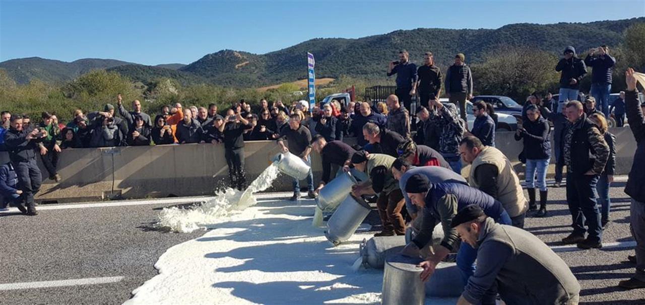 La Crisi Che Attraversa La Filiera Del Latte Ovino In Sardegna